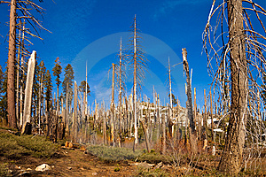 Trail To Smith Peak Stock Images - Image: 14636234