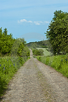 Bumpy Road Stock Photography - Image: 14648512
