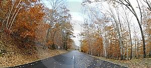 Autumn Royalty Free Stock Photos - Image: 14655688