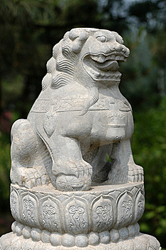 Chinese Lion Stock Photography - Image: 14671262