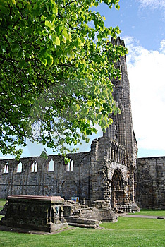 Tree At Cathedral Stock Image - Image: 14674931