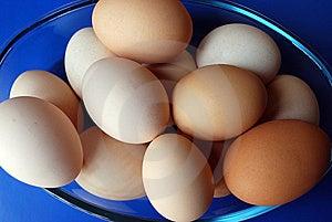 Chicken Eggs Stock Photo - Image: 14676550