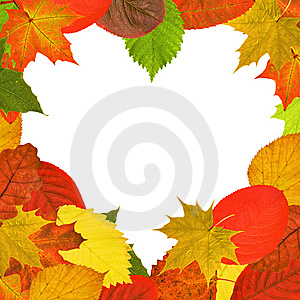 Heart Shape Bright Autumn Leaves Frame Stock Photography - Image: 14681282