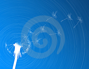 Blow Dandelion. Digital Concept Royalty Free Stock Photos - Image: 14683528