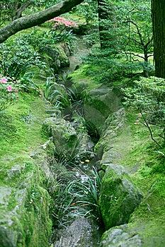 A Creek Stock Photos - Image: 14700513