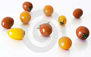 Tomatoes Royalty Free Stock Image - Image: 14710536