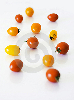 Tomatoes Royalty Free Stock Photography - Image: 14710537