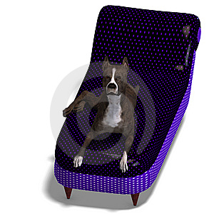 American Staffordshire Terrier Dog. 3D Rendering Royalty Free Stock Images - Image: 14729049