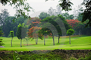 Golf Greens Royalty Free Stock Photos - Image: 14729868