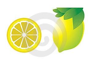 Vector Illustration Of The Lemon Stock Photos - Image: 14736083