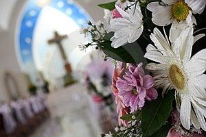 Flower Foreground Stock Photo - Image: 14738690