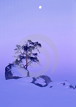 Winter Landscape Royalty Free Stock Photos - Image: 14741858