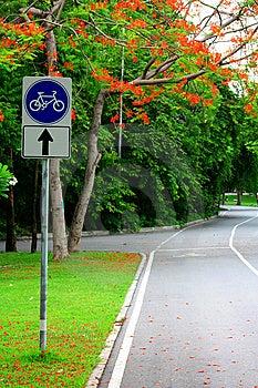 Bicycle Way Stock Photo - Image: 14741950