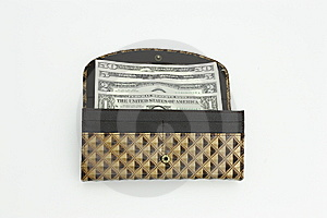 Purse With Dollars Stock Photos - Image: 14743763