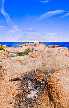 Barbecue On Tropical Beach Royalty Free Stock Image - Image: 14750066