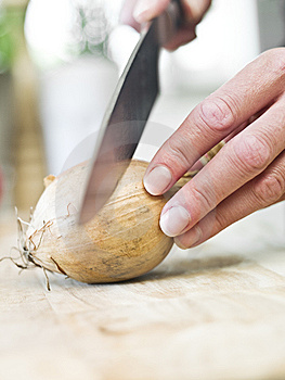 Cutting Onion Stock Image - Image: 14762681