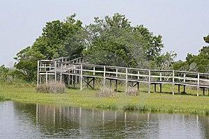 Boardwalk Through Marsh Stock Image - Image: 14775271