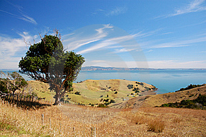 Coromandel Peninsula Royalty Free Stock Photography - Image: 14776027