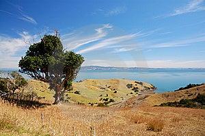 Coromandel Peninsula Royalty Free Stock Photography - Image: 14776027