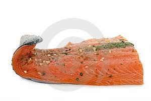 Salmon Royalty Free Stock Photo - Image: 14779105