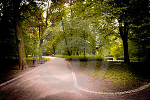Paths In The Park Stock Photo - Image: 14787090