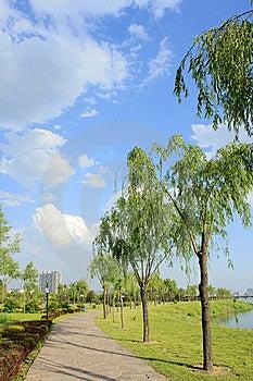 Everglade Park Stock Photos - Image: 14788493
