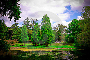 Paths In The Park Royalty Free Stock Images - Image: 14794129