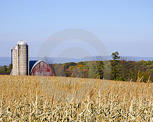 Fall Farm Stock Image - Image: 14795971