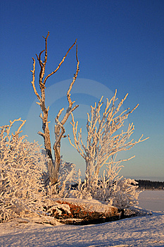 Winter Landscape Stock Images - Image: 14797284