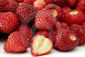 Fresh Wild Strawberries Royalty Free Stock Photos - Image: 14803408