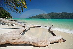 Clear Sea At Adung Island Royalty Free Stock Images - Image: 14807229