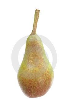 Pear On White Royalty Free Stock Photos - Image: 14807908