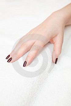 Manicure Royalty Free Stock Photos - Image: 14810248