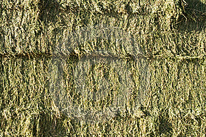 Hay Bales Stock Photography - Image: 14814552