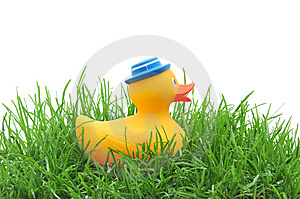 Rubber Duck In Grass Royalty Free Stock Photo - Image: 14858865