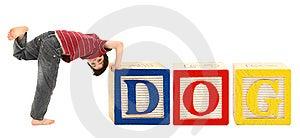 Alphabet Blocks And Adorable Boy DOG Royalty Free Stock Photo - Image: 14859495