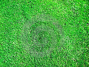 Green Field Royalty Free Stock Image - Image: 14878096