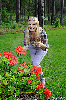 Beautiful Gardener Woman With Red Flower Bush Stock Photography - Image: 14878382