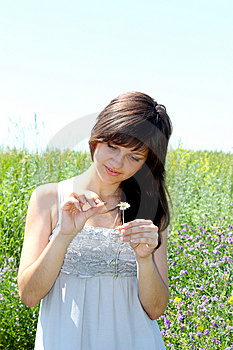 The Girl Guesses On A Camomile Flower Royalty Free Stock Photos - Image: 14892538