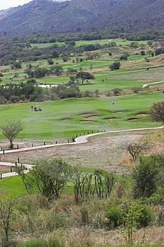 Golfing Immagine Stock Libera da Diritti - Immagine: 1495506
