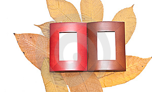 Yellow Leaves And Two Frames Royalty Free Stock Photos - Image: 14901688