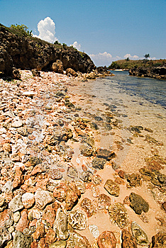 Rocky Beach Shoreline Stock Photography - Image: 14902782