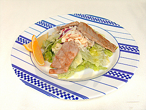 The Hot Appetizer With Pieces Of Tuna. Royalty Free Stock Photo - Image: 14910615