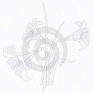 Illustration Of Lilies Stock Photography - Image: 14918772