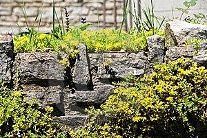 Rock Garden Stock Photography - Image: 14919272
