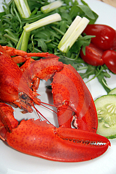 Lobster Salad Royalty Free Stock Photography - Image: 14925577