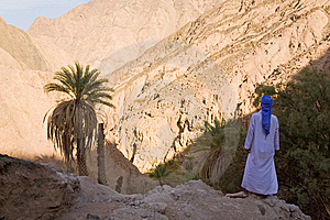 Egyptian Bedouin Stock Photos - Image: 14926413