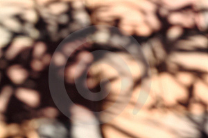 Abstract Brown Blurred Background Stock Photo - Image: 14926630