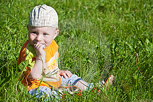 Beautiful Little Boy Looks In Green  Meadow Royalty Free Stock Image - Image: 14929626