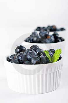 Fresh Blueberries In A Row Vertical Royalty Free Stock Image - Image: 14935116